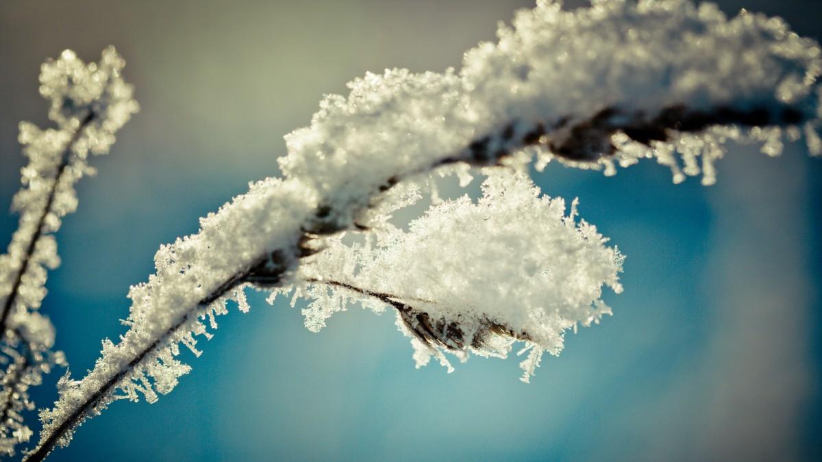 雾凇雪景景观图片